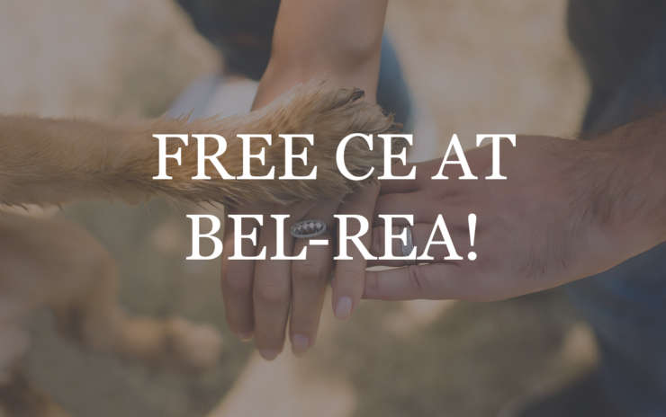 Free CE at Bel-Rea!