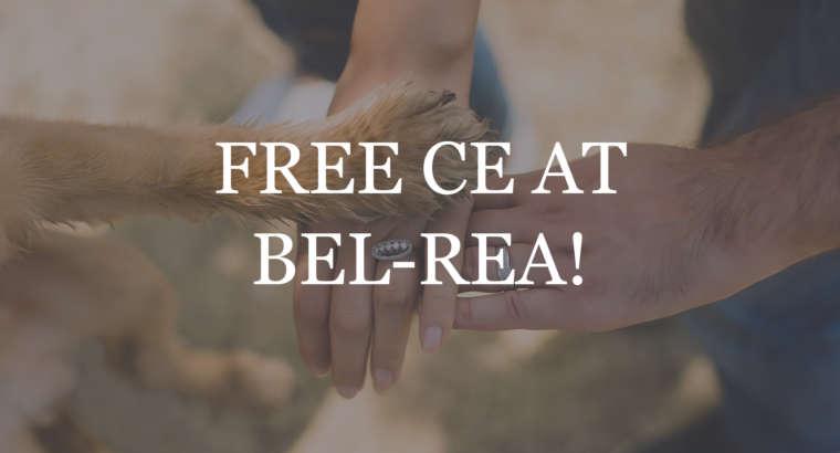 Free CE at Bel-Rea!