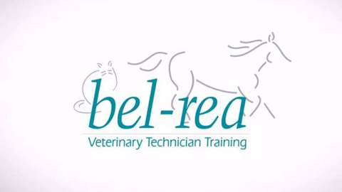 Integrative Medicine Part 1 – Bel-Rea CE Webinar
